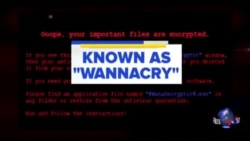 日本等150个国家的电脑遭勒索软件攻击