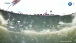Müsilajla Kaplanan Marmara Denizi'nin Derinlerinde Neler Oluyor?