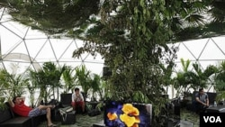 Varios ciudadanos y turistas visitaron la exhibición de la Cumbre Climática de la ONU.