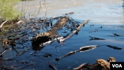 El derrame cubrió decenas de millas en el río Yellowstone.