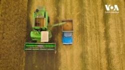 Закон про ринок землі: поради та застереження експертів США. Відео