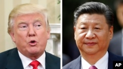 This combination of 2016 file photos shows, U.S. President Donald Trump and China's President Xi Jinping.