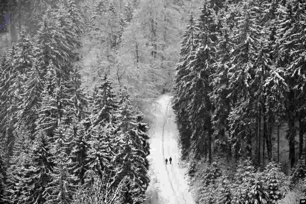 Tourists walk in the freshly snow-covered forest in Willingen, Germany.