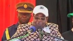 津巴布韦选举总统和议会