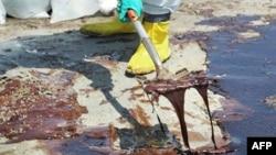 一名英国石油公司职工在清理海岸漏油