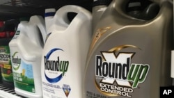 FILE - Containers of Roundup are displayed on a store shelf in San Francisco, Feb. 24, 2019. (AP Photo/Haven Daley, File)