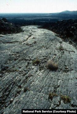 The solidified lava flows in the preserve are evidence of violent volcanic activity between 15,000 to just 2,000 years ago.