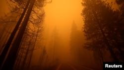 Požar u Kaliforniji (Foto: Rojters/Fred Greaves)