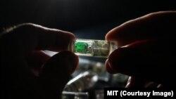 دانشمندان پیش از خوراندن این آخذه به انسان، باید اندازۀ آن را کوچکتر بسازند
