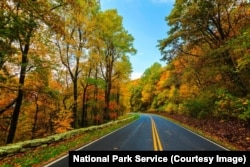 Fall colors in Shenandoah's north district