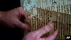 US professor David Lafevor handles a volume of slave registries inside Espiritu Santo Church in Old Havana, Cuba, as he works to digitize it, Jan. 12, 2017.