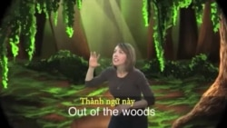 Thành ngữ tiếng Anh thông dụng: Out of the Woods (VOA)