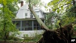 Las tormentas que azotaron el área de Washington, D.C. causaron el derribo de árboles que bloquearon calles.