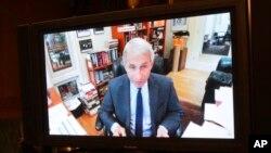 Dr. Anthony Fauci gjatë dëshmisë me video-konferencë në komisionin e Senatit