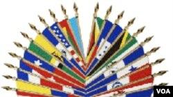Senbòl Òganizasyon Eta Ameriken (OEA).