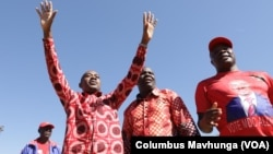 FILE: Zimbabwe's main opposition party leader, Nelson Chamisa arriving in Marondera district about 80 km east of Harare, November 10, 2018 to address members of his the Movement for Democratic Change .