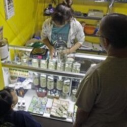 An employee, behind the counter, helps clients choose from jars at a medical marijuana dispensary in Los Angeles