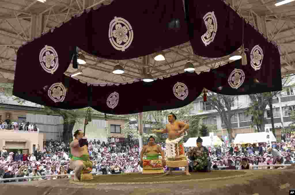 Mongolian sumo grand champion Harumafuji, second from right, performs his ring entry form before the start of the ritual sumo bouts held at the Yasukuni Shrine in Tokyo, Japan.