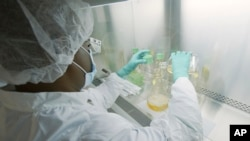 FILE - In this May 2020 photo provided by Eli Lilly, a researcher tests possible COVID-19 antibodies in a laboratory in Indianapolis. (David Morrison/Eli Lilly via AP, File)