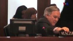 M.C. Machado no fue escuchada en la OEA
