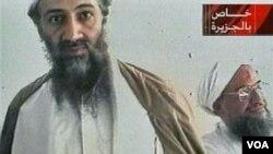 بن لادن قرار بود به مناسبت دهمین سالگرد حمله سپتامبر در تلویزیون الجزیره پیام های تبلیغاتی پخش کند. اما چندماه زودتر کشته شد