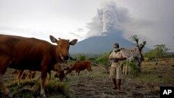 28일 인도네시아 발리 섬 카란가셈에서 밭일을 하는 농부 뒤로 아웅 화산이 보인다.
