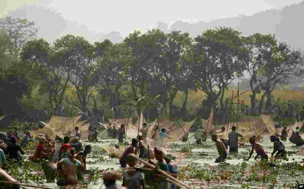 Indian villagers participate in community fishing as part of Bhogali Bihu celebrations in Panbari village, some 50 kilometers (31 miles) east of Gauhati.