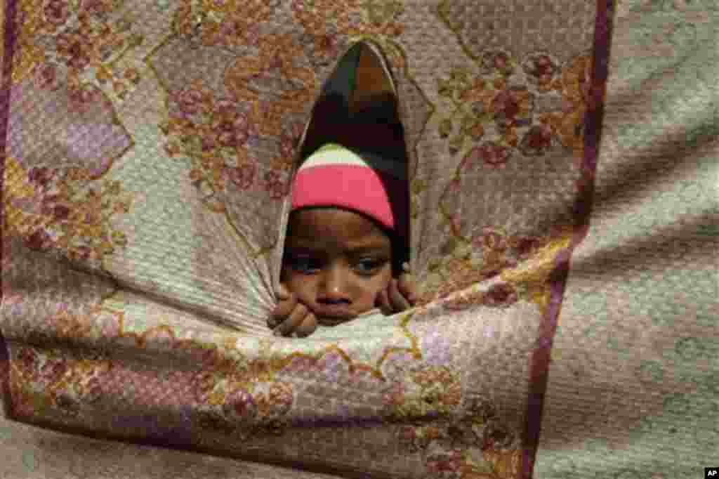 A boy peeks inside a tent where the carcass of whale shark is being kept in Karachi, Pakistan, Thursday, Feb. 9, 2012.