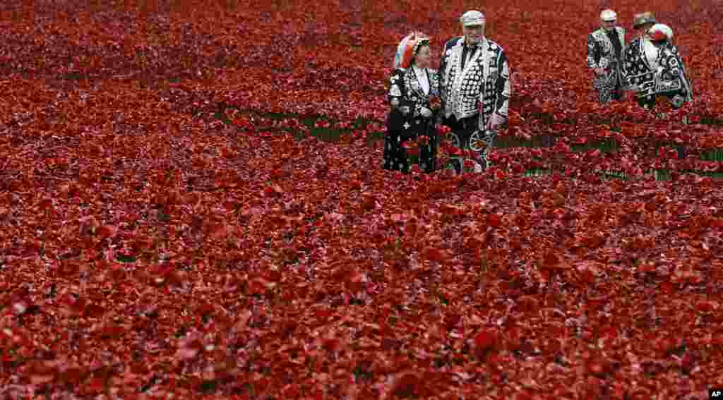 Pearly Kings and Queens plant poppies at the Tower of London. 'Blood Swept Lands and Seas of Red' is an evolving art installation where 888,246 poppies will be planted in the moat by volunteers with the last poppy being planted on Nov. 11, 2014. Each poppy represents a British or Colonial fatality in World War I.