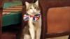 لری، کارمند وظیفه شناس دولت بریتانیا در پست خود باقی می ماند