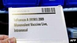 Domuz Gribi Aşısı Mevsimsel Grip Aşısına Dahil Edilecek