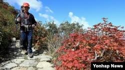 지난해 10월 붉게 물든 설악산 대청봉. (자료사진)