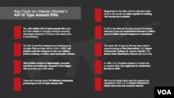 Infographic on AR-15 Gun
