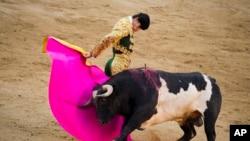 资料照:西班牙斗牛士在马德里的拉斯班塔斯斗牛场表演斗牛。