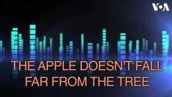 «Английский за минуту»: apple doesn't fall far from the tree