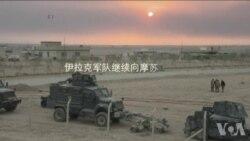伊拉克军队进入摩苏尔 伊斯兰国顽固抵抗