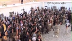 Experts See Rise of ISIS as Significant Development