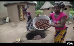 Perempuan di utara Ghana sebagai upaya mencari bahan-bahan mentah untuk menghasilkan sejumlah produk, seperti shea butter, sebagai ilustrasi. (Foto: VOA)