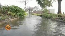 پنجاب میں نہری پانی چوری کیوں ہوتا ہے؟