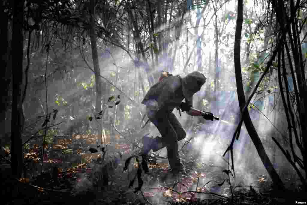 A volunteer works to put out a forest fire in an area of Chapada dos Veadeiros National Park, in Alto Paraiso, Goias, Brazil, Oct. 24, 2017.