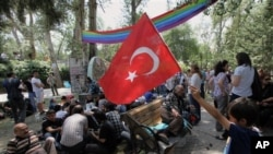 Turkish protesters in Kugulu Park in Ankara, Turkey June 12, 2013