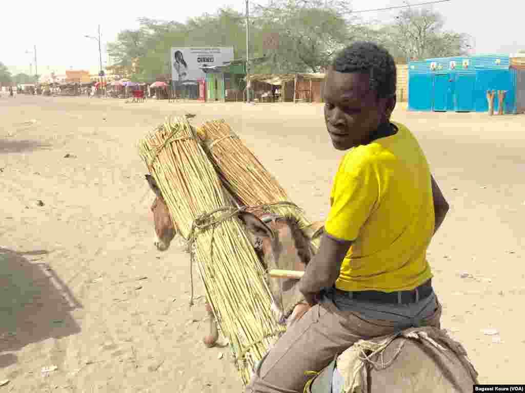 Un adolescent sur un âne, communément utilisé pour le transport dans cette région du Tchad, Photo VOA Bagassi Koura