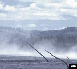 Vulkanska erupcija gotovo je potpuno uništila biljni i životinjski svet u okolini