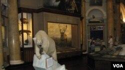 位于圣彼得堡市中心的南极和北极博物馆。主要内容讲述俄国和苏联开发和探险北极,以及北极航道历史。(美国之音白桦拍摄)