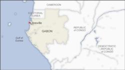 Le coronavirus stimule la pharmacopée gabonaise