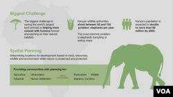 World Elephant Day.