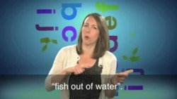 English in a Minute: A Fish Out of Water