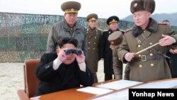 """Chủ tịch Quốc hội Hàn Quốc cho rằng nếu lãnh tụ Bắc Hàn Kim Jong-un tới Hà Nội và có cơ hội thảo luận với Chủ tịch Trương Tấn Sang thì điều đó sẽ có """"ảnh hưởng lớn, giúp thống nhất bán đảo Triều Tiên trở thành một quốc gia hòa giải và hợp tác""""."""