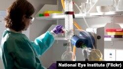 Фото: Національний інститут дослідження ока