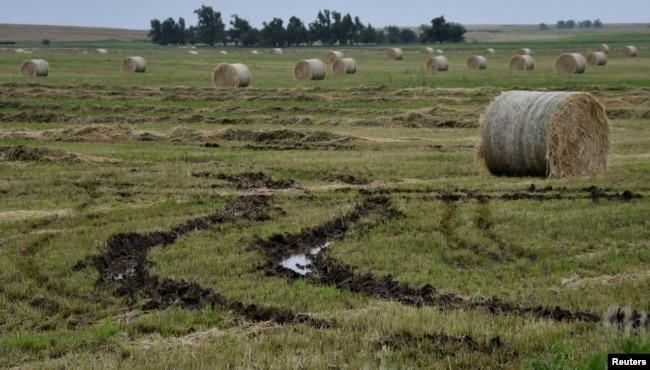 Rollos de heno dañados por la lluvia e inundaciones que no pueden ser movidos por las condiciones lodosas del terreno, se observan en una granja en Alva, Oklahoma, el 24 de mayo de 2019.